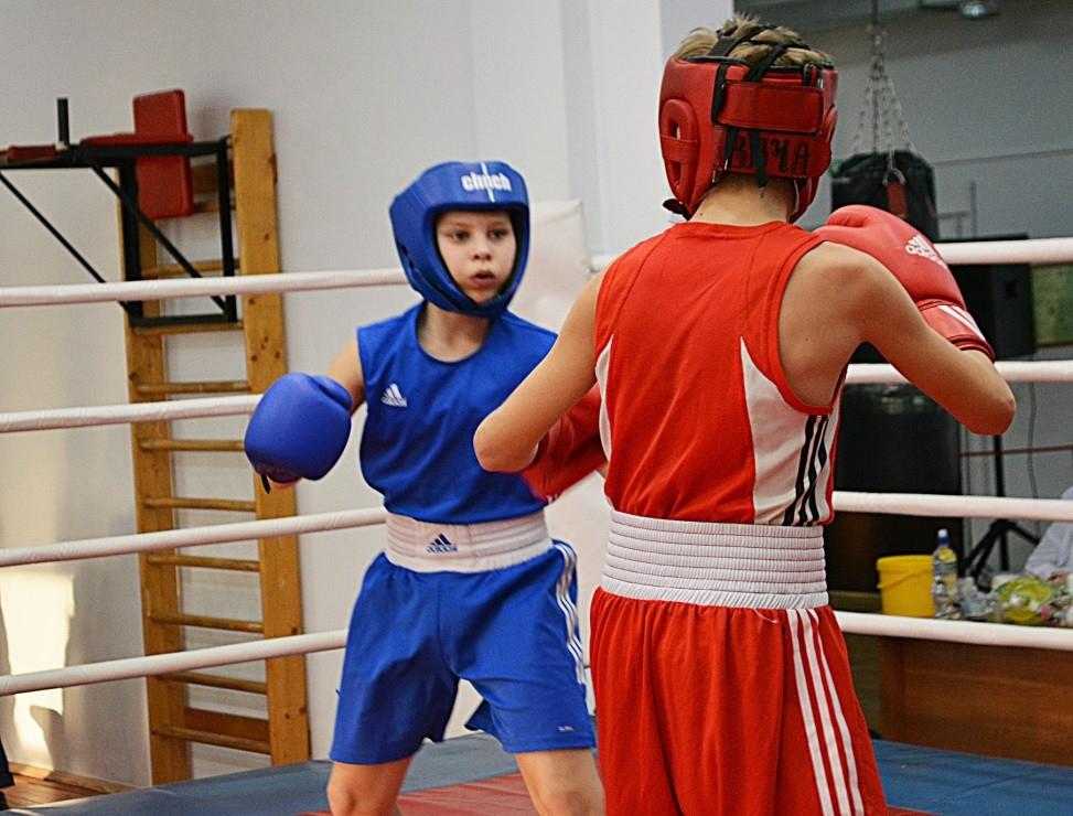 Новосибирские боксёры поборются за попадание на первенство Сибири