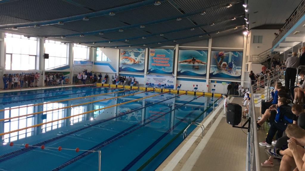 Чемпионат СФО по плаванию: у спортсменок НЦВСМ 15 медалей