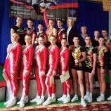 11-14 декабря состоятся VIII Всероссийские соревнования «Аэробика Сибири» и открытый кубок города Новосибирска «Сибирские звездочки»