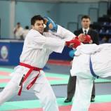 Новосибирцы успешно выступили в чемпионате России по карате