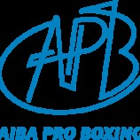 Титульный бой Михаила Алояна за звание чемпиона мира пройдет на Кузбассе