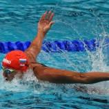 Пловцы выступили на заключительном старте 2015 года!