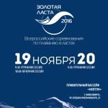 Новосибирск готовится принять Всероссийские соревнования по плаванию в ластах «Золотая ласта»