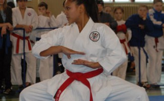 VII Международный турнир по каратэ «Кубок Покрышкина»