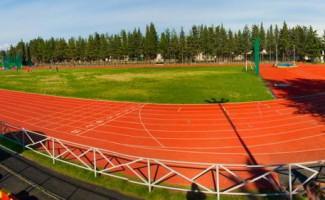 С золотом и бронзой Чемпионата России по эстафетному бегу вернулись спортсмены в Новосибирск