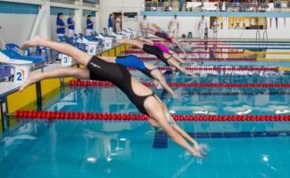 Итоги Чемпионата и Первенства Сибирского федерального округа по плаванию