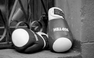 Итоги VIII международного турнира по боксу памяти Николая Павлюкова