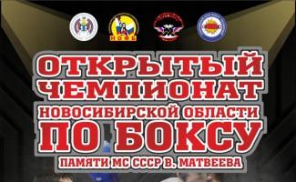 Чемпионат Новосибирской области по боксу памяти МС СССР Виктора Матвеева