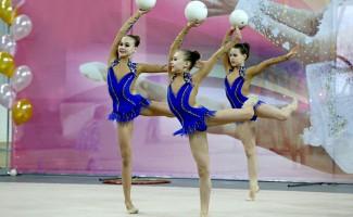 В Новосибирске пройдет турнир по художественной гимнастике памяти Альбины Вешкурцевой