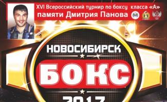 Традиционный турнир по боксу памяти Д.Панова пройдет в Новосибирске